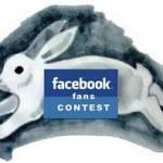 facebook fans contest